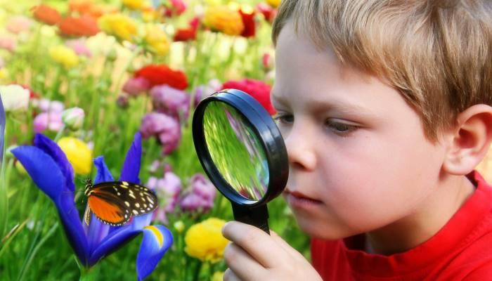 Ребенок смотрит бабочку