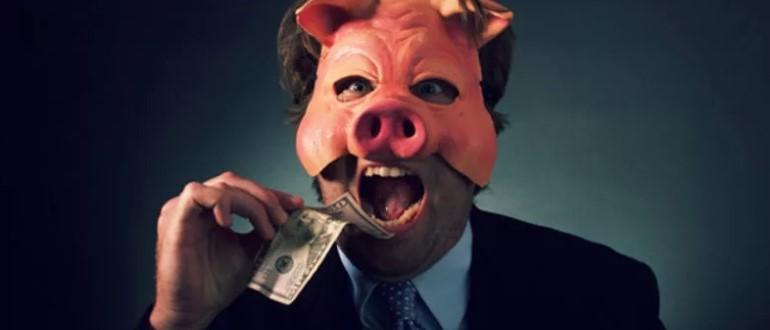 Интересная свинка